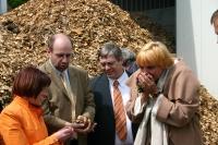 Grünen Chefin interessiert an Holzhackschnitzeln